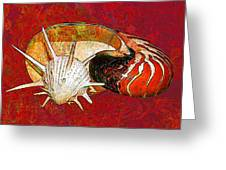 Underwater. Sea Shells. Greeting Card