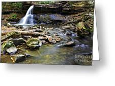 Upper Falls Holly River State Park Greeting Card