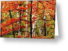 Painted Landscape Greeting Card