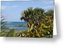 Sebastian Inlet State Park In Florida Greeting Card