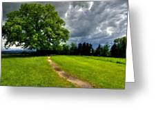 Landscape Print Greeting Card