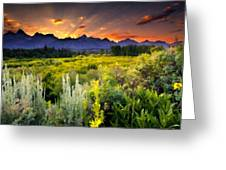 P G Landscape Greeting Card