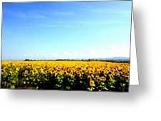P W Landscape Greeting Card