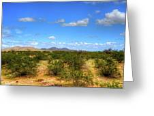 Sonora Desert Greeting Card