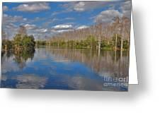47- Everglades Serenity Greeting Card