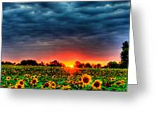 Landscapes To Paint Greeting Card