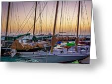 4956- Key West Harbor At Sunset Greeting Card