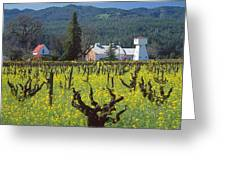 4b6394 Mustard In The Vineyards Greeting Card