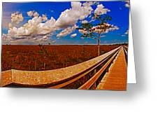 4x1 Everglades Panorama Number Two Greeting Card