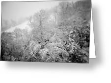 Abstract Scenes At Ski Resort During Snow Storm Greeting Card
