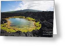 Ahihi Kinau Natural Reserve Greeting Card