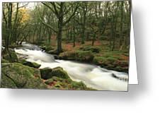 Autumn At Golitha Falls Greeting Card