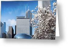 Chicago Bean Millenium Park Greeting Card