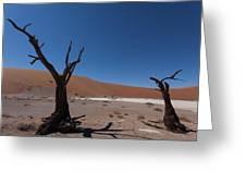 Death Tree Hidden Vlei Greeting Card