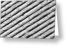 Diffraction Grating Tem Greeting Card