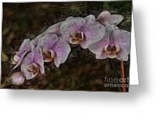 5 Dollar Orchid Greeting Card