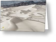 Dumont Dunes 5 Greeting Card by Jim Thompson