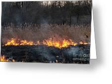 Fires Sunset Landscape Greeting Card