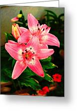 Flowering Plant Greeting Card