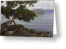 Indian River Lagoon Greeting Card