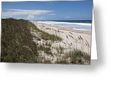Juan Ponce De Leon Landing Site In Florida Greeting Card