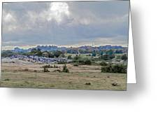 Landscape In Tanzania Greeting Card