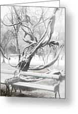 Park During Heavy Snowfall  Greeting Card