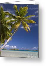 Polynesian Beach With Palms Greeting Card
