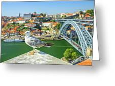 Porto Skyline Seagull Greeting Card