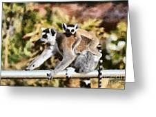 Ring Tailed Lemur With Baby Greeting Card