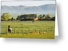 Scottish Scenery Greeting Card