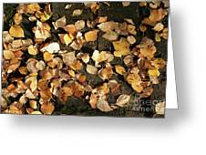 Silver Birch Leaves Lying On A Brick Path In A Cheshire Garden On An Autumn Day   England Greeting Card