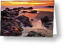 5 Star Sunset Greeting Card