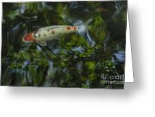 The Koi Pond Greeting Card