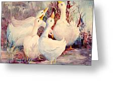 5 White Geese Greeting Card