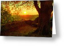 Nature In Greeting Card