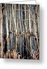 50 Shades Of Trees Greeting Card