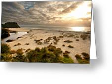 New Landscapes Greeting Card