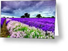 Paint Landscape Greeting Card