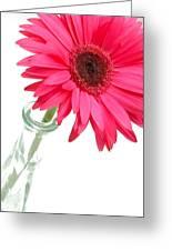 5519c2-002 Greeting Card