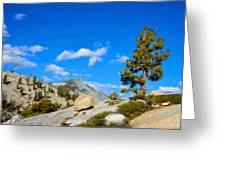 D L Landscape Greeting Card
