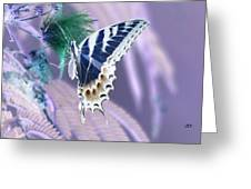 5816 2 Greeting Card