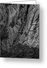 5840- Yellow Mountains Black And White Greeting Card