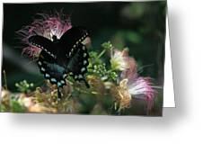 5848 1 Greeting Card
