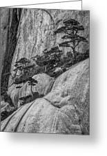 5867- Yellow Mountains Black And White Greeting Card