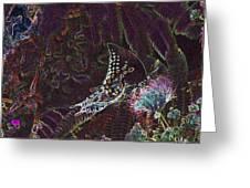 5877 6 Greeting Card