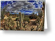 Anza-borrego Desert State Park Greeting Card