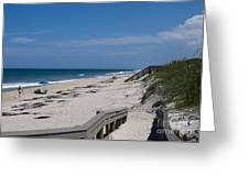 Brevard County Florida Beaches Greeting Card