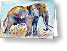 Colorful Cute Elephant Greeting Card