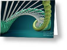 Dna Structure Greeting Card